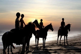 HORSE RIDING - GIANYAR